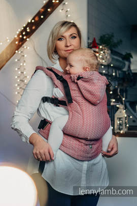 Ergonomic Carrier, Toddler Size, jacquard weave 100% cotton - wrap conversion from LITTLE LOVE - MAGICAL MOMENTS - Second Generation